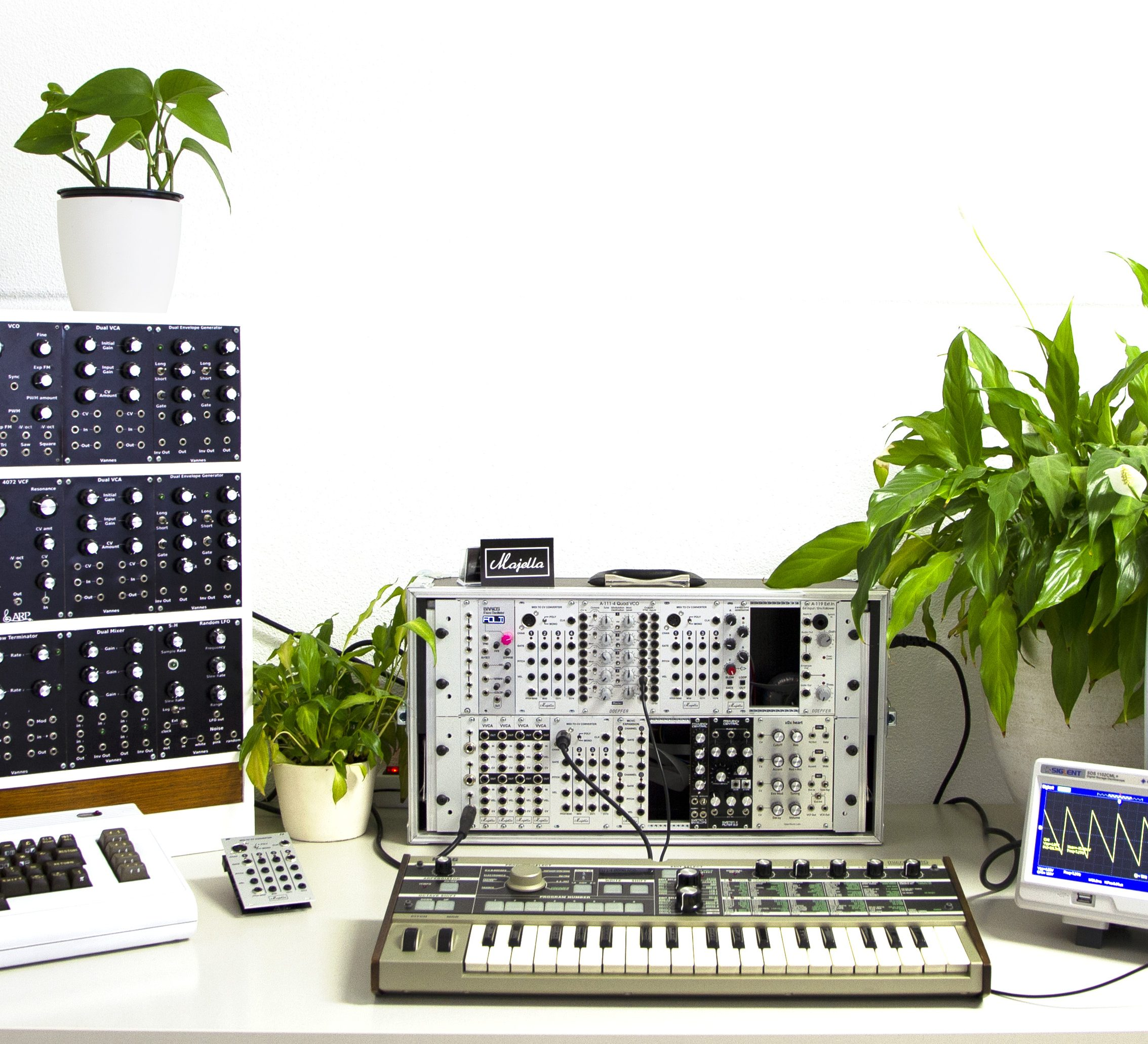 Majella Synthesizers and audio gear with plants in the studio